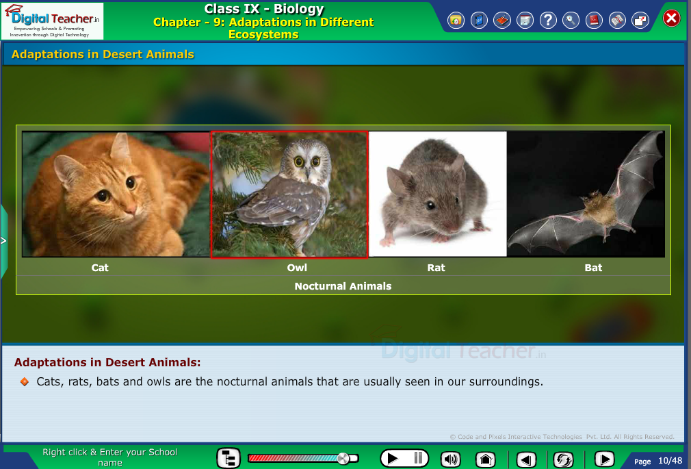 Digital teacher smart class on adaptations of different animals- smart class