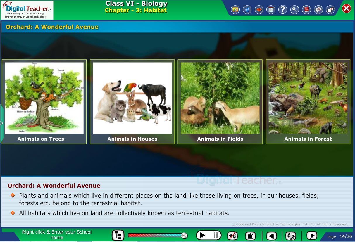 Digital teacher smart class about animals enclosed in a fruit planted area