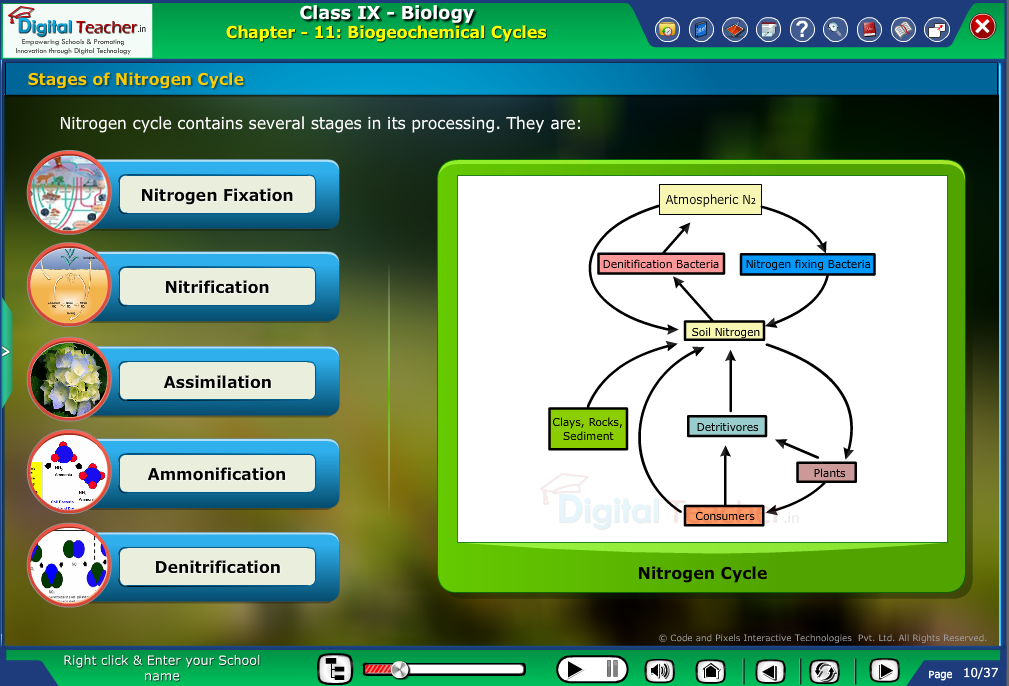 Digital teacher smart class explanation on nitrogen cycle - smart class