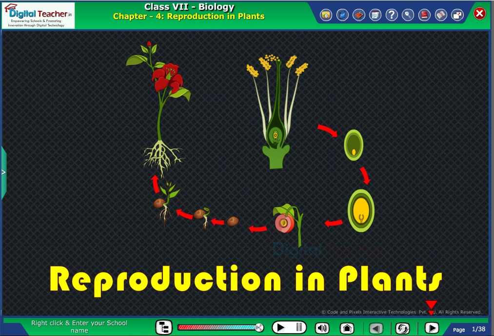 Digital teacher smart class about reproduction in plants