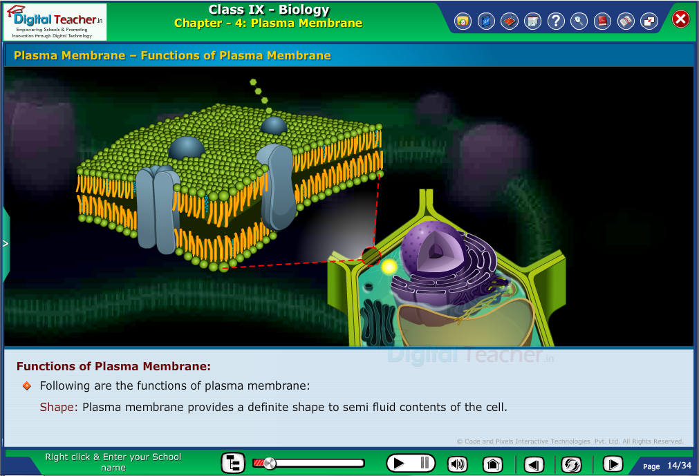 Digital teacher smart class explanation on plasma membrane - smart class
