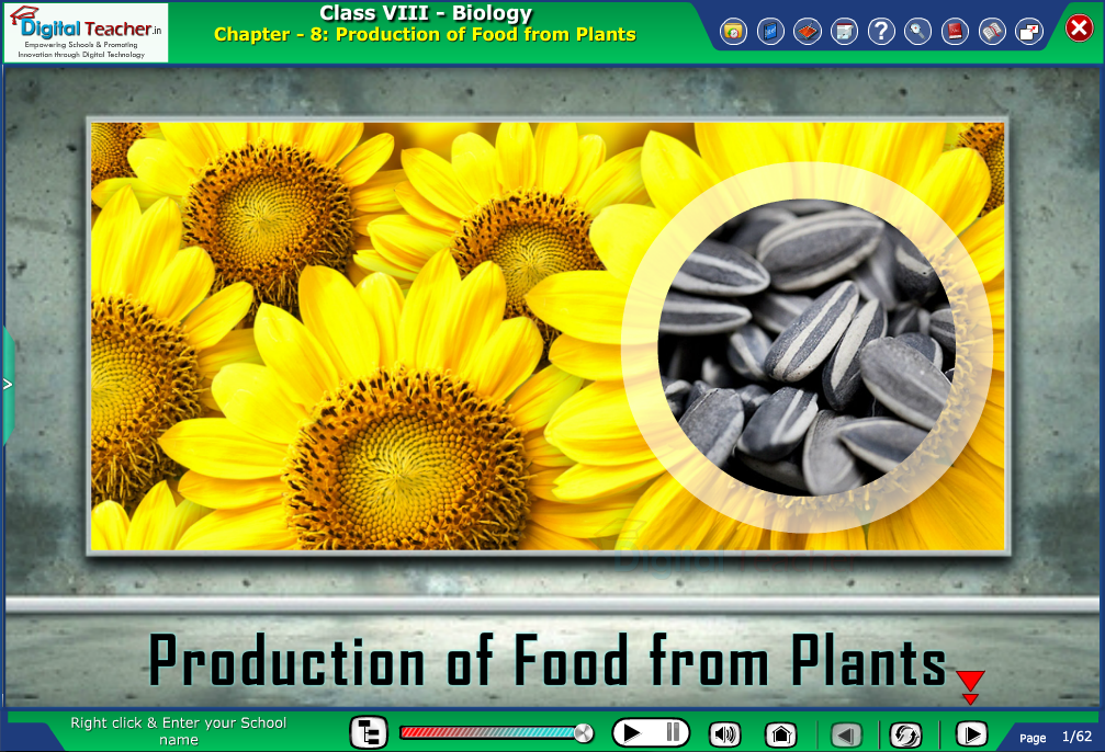 Digital teacher smart class about production of food from plants