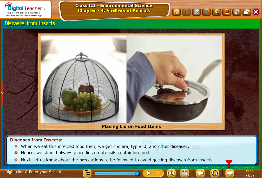 Diseases from Insects