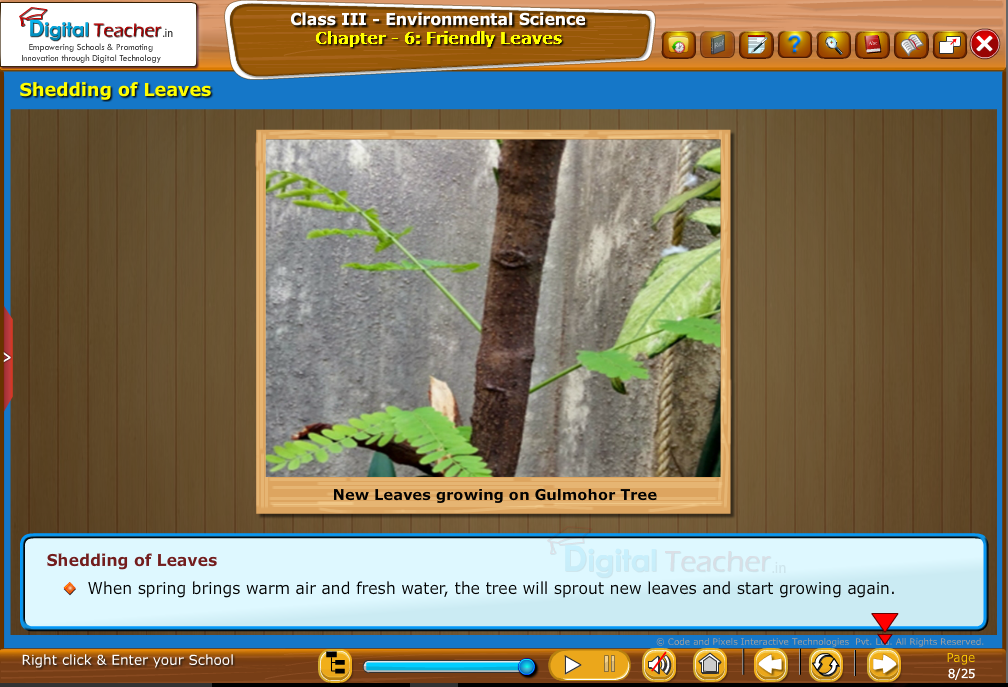 Shedding of Leaves