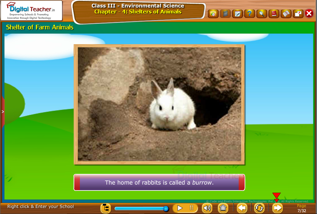 Sheler of Farm Animals