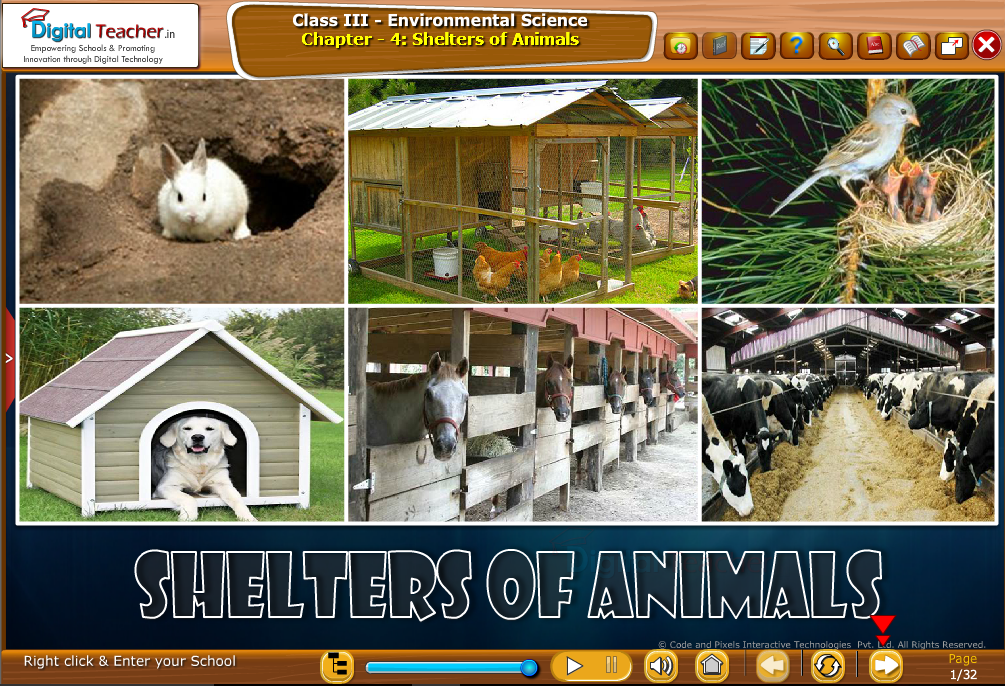 Shelters of Animals