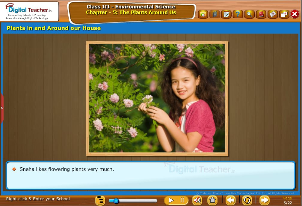 The plants Around us-Plants in and Around  our house