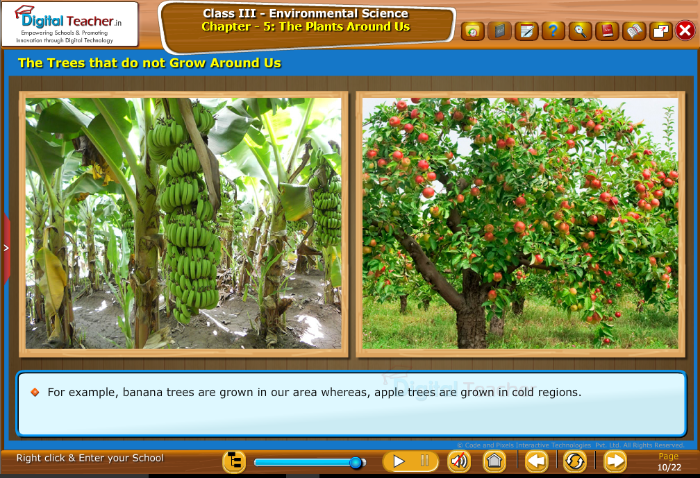 The trees that do not grow around us