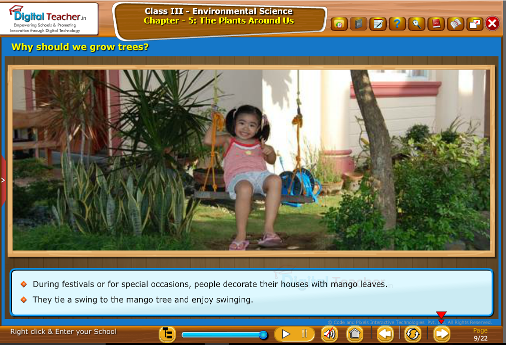 Why should we grow trees