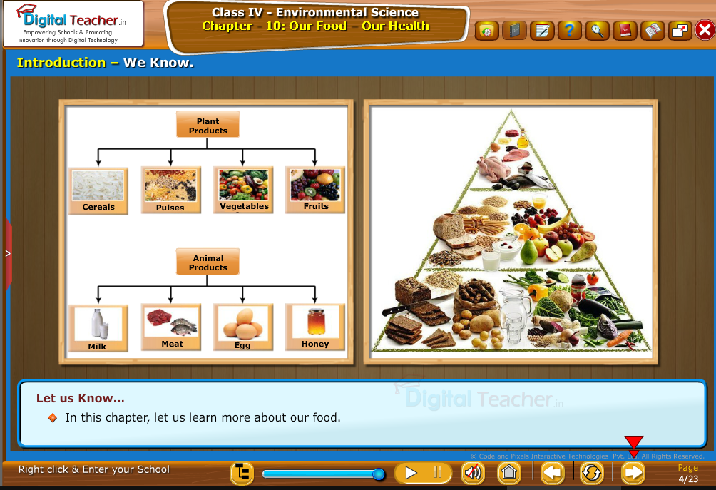 our-food -introduction